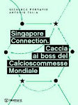 singapore_connection